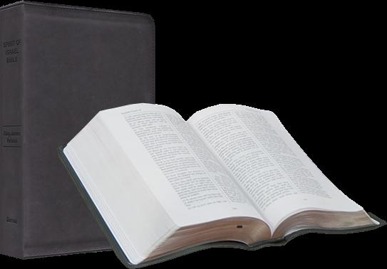 spirit-of-israel-bible