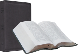 spirit-of-israel-bible